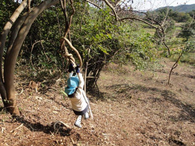間伐した樹木を利用した遊具で自然と遊ぶ子ども。写真:伊藤 智子