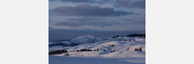 裏庭にしては悪くない冬のイエローストーン。Photo: Steven Fuller