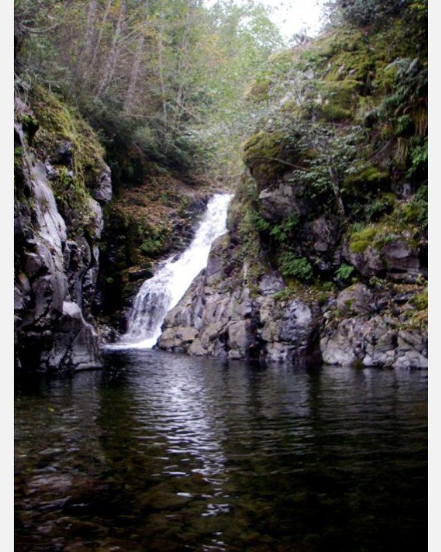 上流移動の最終地点。この滝つぼにサーモンの巨大な産卵場所が存在する。 Photo: Ari Zolonz collection