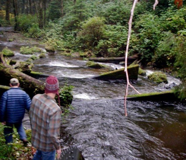 沿岸河川の排水溝の川下に設置された魚梯のおかげで魚は産卵場所まで到達できるようになったが、少し修復が必要だ。Photo: Ari Zolonz collection