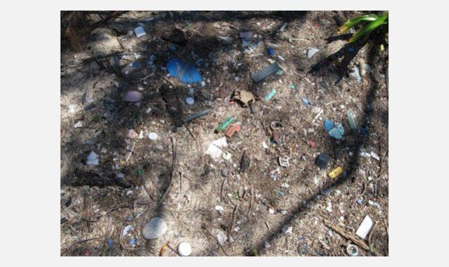 どんなに小さくなっても土に還ることのない微細ごみ。写真:一般社団法人JEAN
