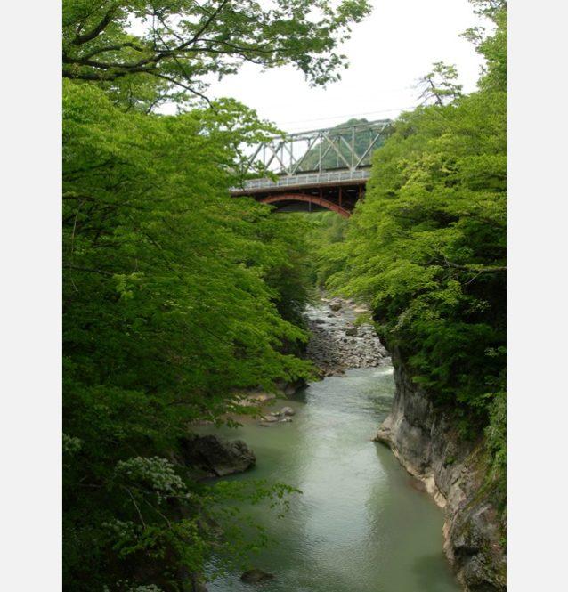 新緑の吾妻川。JR吾妻線と国道145号線が走るが、ダムが完成すればこの美しい景観も水没してしまう。写真:八ッ場あしたの会 環境エッセイ「八ッ場ダムを知っていますか」を読む
