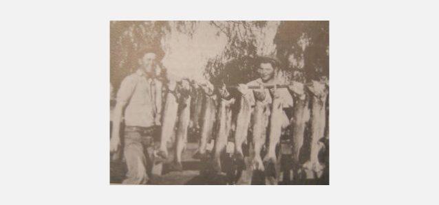 1920年代の黄金時代、ベンチュラ・リバーから大量のスチールヘッドを釣り上げるペイラノ兄弟