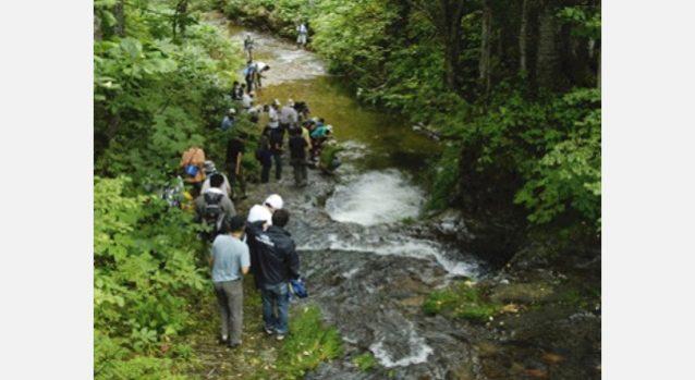 毎年恒例のサクラマスの遡上を観察するイベントはサンルの魅力に触れた多くの参加者に感動を与えます。写真:サンル川を守る会