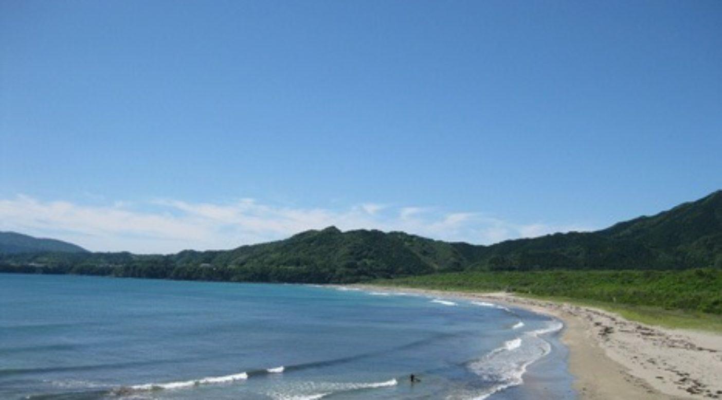 高知の静かな浜辺を歩かせてもらいました。