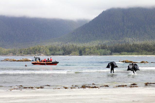 ゾディアックボートまでゴミを運搬するチコとウィージ。Photo: Malcolm Johnson