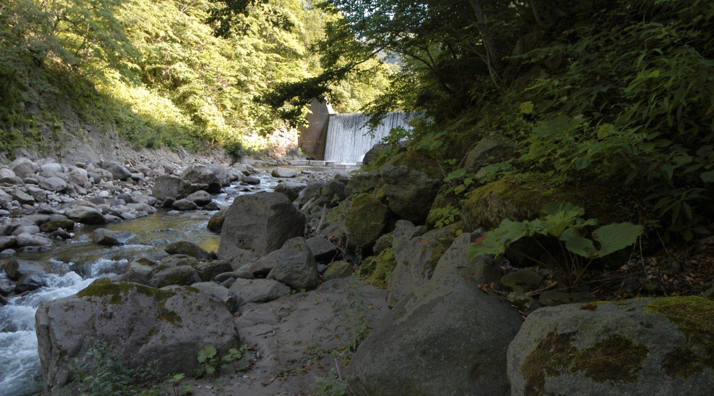 山のなかを流れる須築川に突然姿を現す砂防ダム。写真:稗田一俊