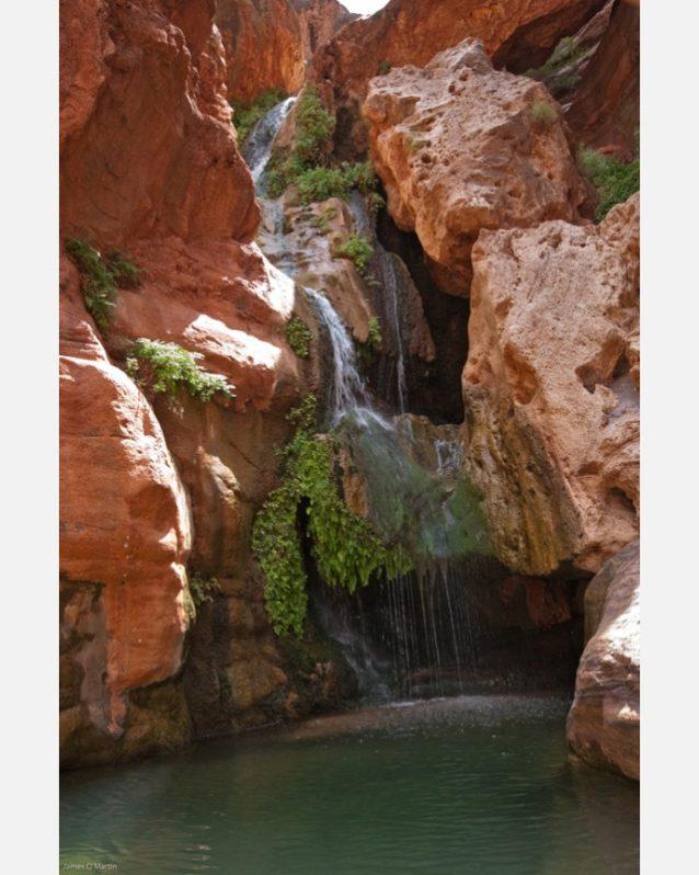 この採掘禁止令によって保護される泉のひとつであるエルブス・カズム。グランド・キャニオンの貴重な泉や河川に水を供給する帯水層がいったんウランで汚染されてしまえば、除染することは不可能だ。