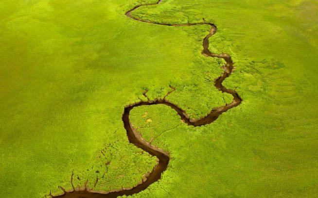 蛇行するスキーナ川。ブリティッシュ・コロンビア、2009年 Photo: Paul Colangelo
