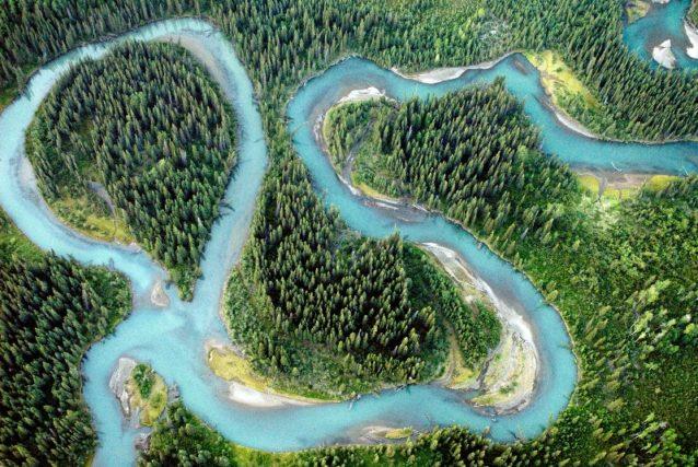 蛇行するイスカット川。ブリティッシュ・コロンビア Photo: Paul Colangelo