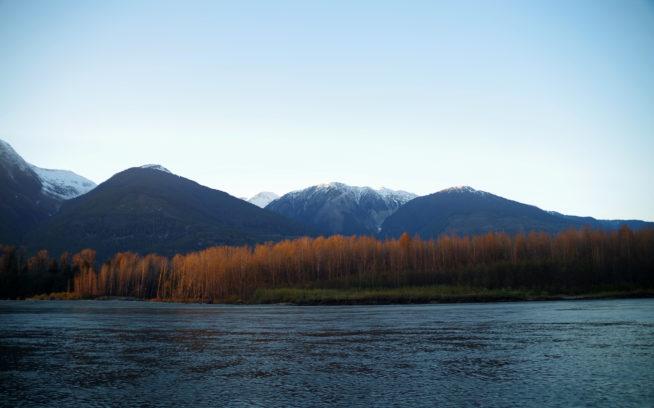 スキーナ川の川辺からの風景。写真:足立信正