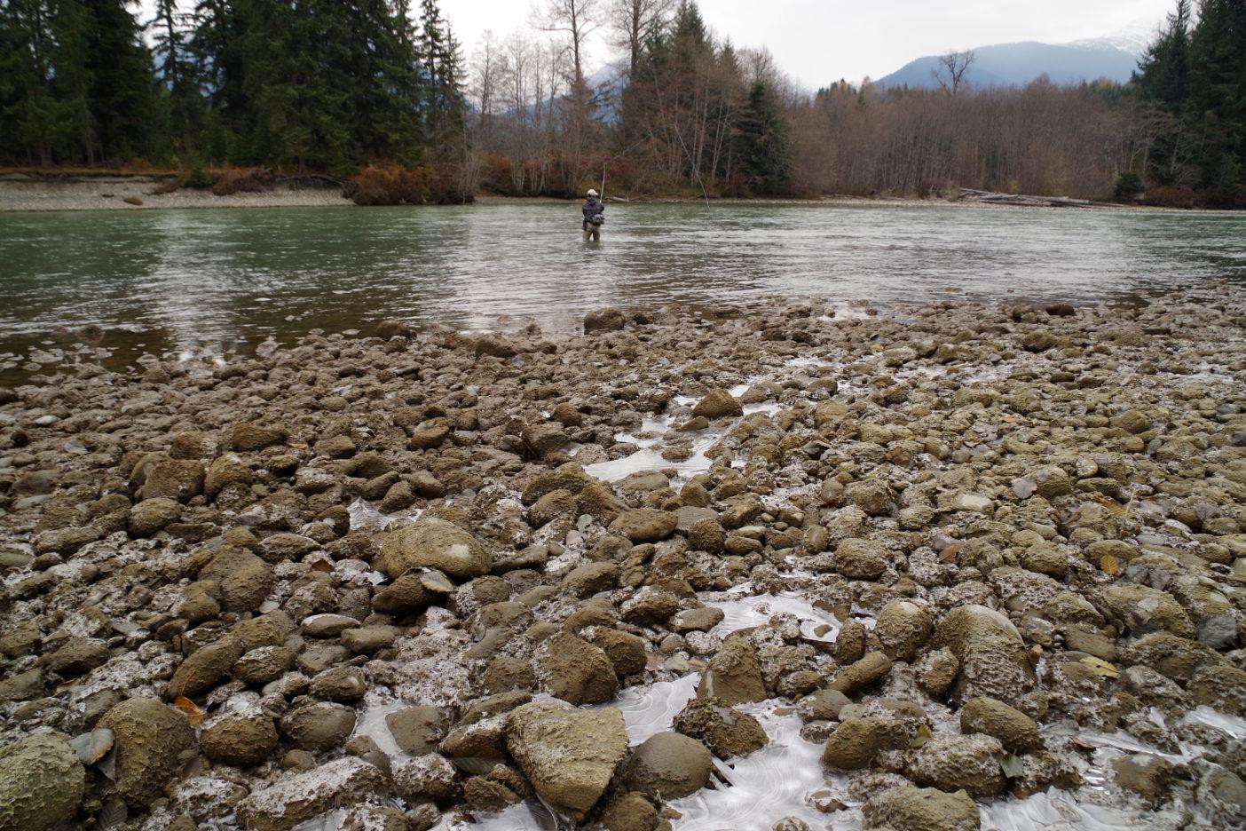 氷点下の川辺でキャスティングを繰り返す釣り人。写真:足立信正