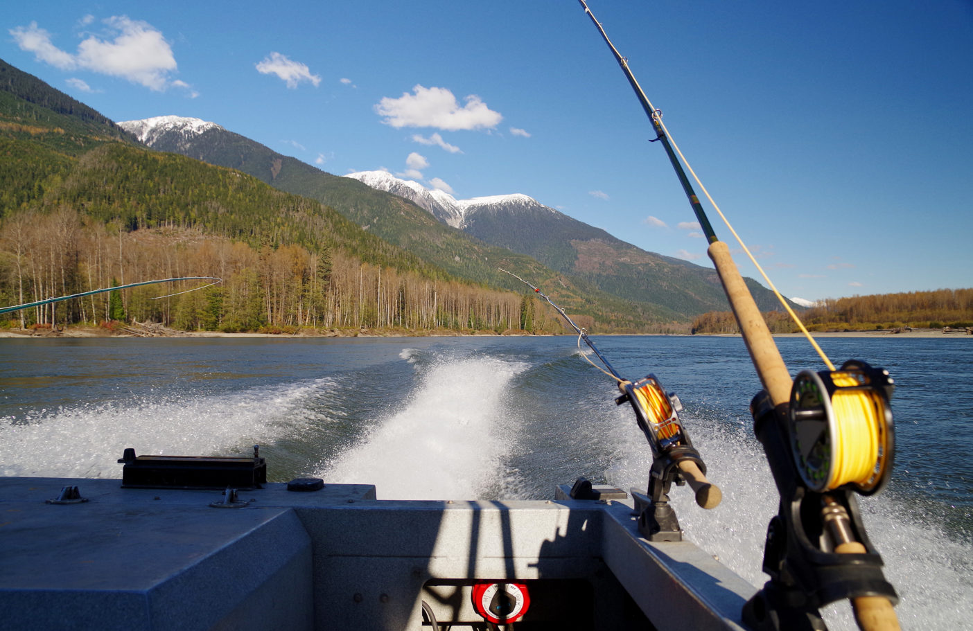 スキーナ川のポイントに向うジェットボートより。写真:足立信正