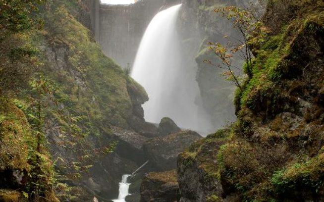 オリンピック国立公園内にある64メートルのグラインズ・キャニオン・ダムは、1927年以来、たぐいまれなチヌーク・サーモンの産卵床への遡上を違法に塞いできた。Photo:Ben Knight/ダムネーション