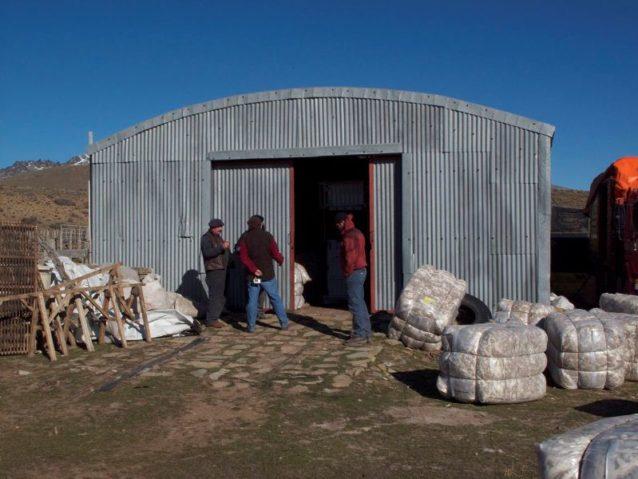 パタゴニア北部では春は羊の毛を刈る時期のため、巡回の毛刈り作業者たちがエスタンシア・エル・クロノメトロの小屋のなかで忙しく働く。ウール1俵は約180キロ。