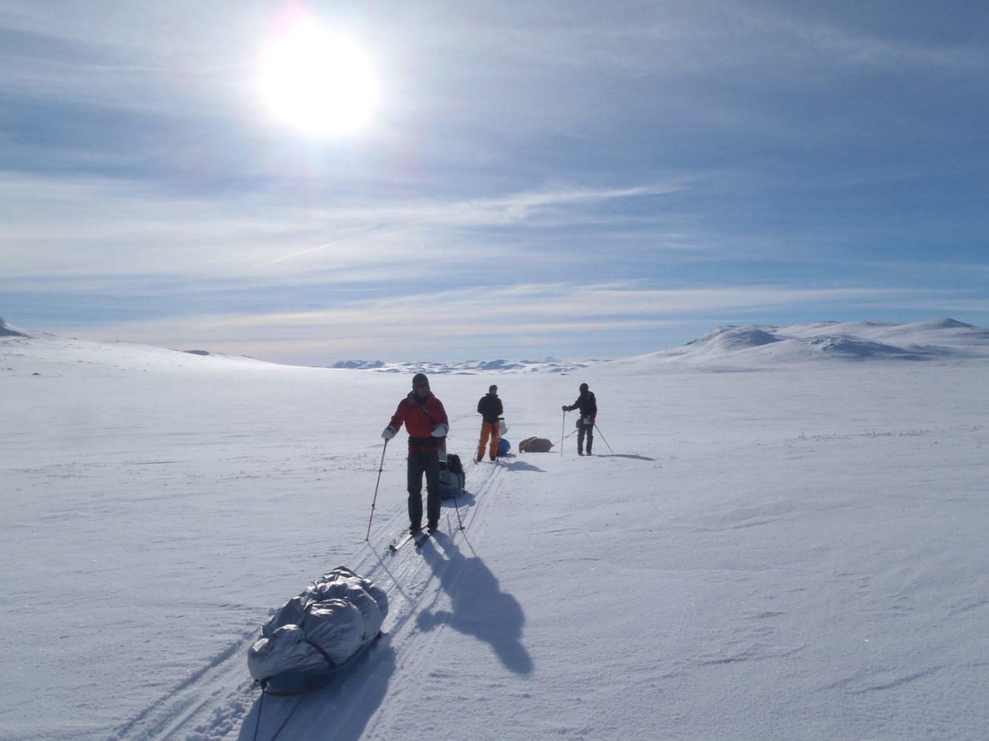 高原に上がったところ。天候、視界、雪質すべて良好