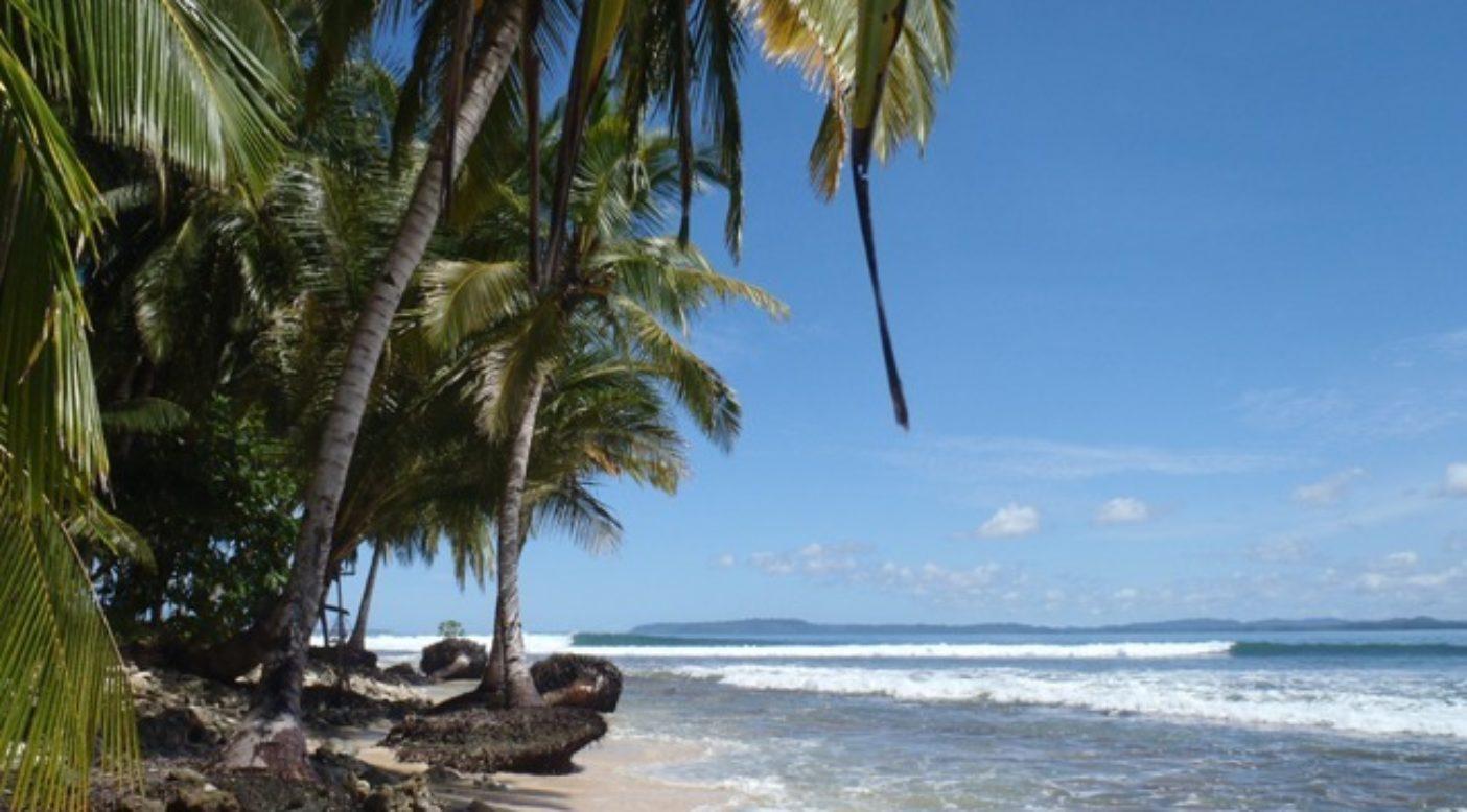ドリームトリップ – 波を求めて