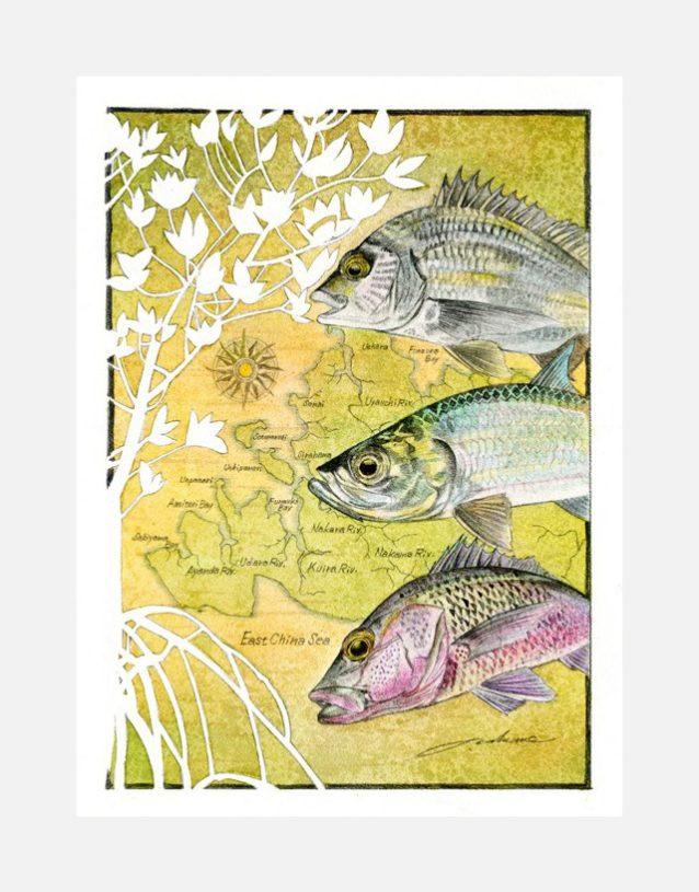 『Irumty Mangrove Grand Slam(イルムティ・マングローブ・グランドスラム)』 山塊を心臓として、その周りには血管のように川が広がる西表島。島の血液ともいえる清き流れが海に注ぎ、多くの動植物を育んでいる。絵:中根 淳一