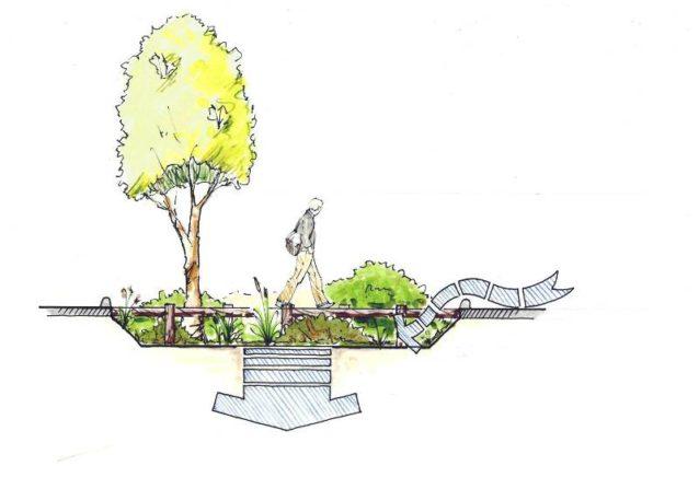 バイオスウェールは雨水を集め、その流出を遅らせて、土壌が汚染物をろ過することを可能にする。このイラストの矢印はバイオスウェールを通る水の流れと吸収の方向を示している。Illustration:Arcadia Studio