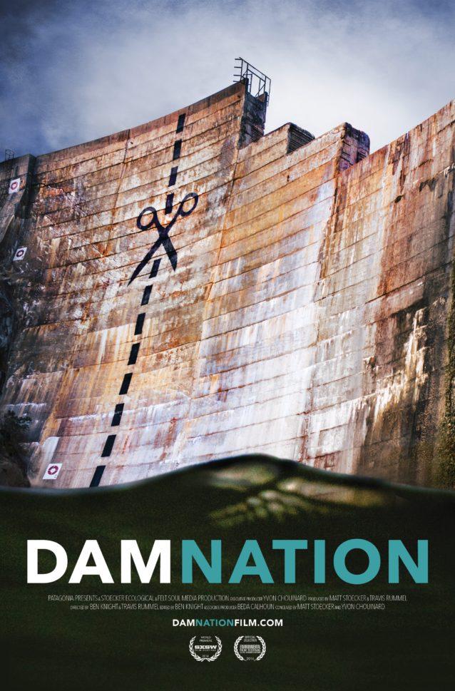 映画『ダムネーション』の公式ポスター。