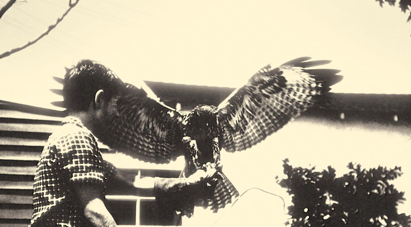 巣には3羽の鳥がいるかも知れない。後で縮こまっている1羽、真ん中にいる1羽。そして前で攻撃態勢を取る1羽。捕えたいのはいちばん前にいる1羽だ。Photo: YVON CHOUINARD COLLECTION