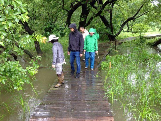 荒川の大草原を守るために:グループインターンシップでの取り組み