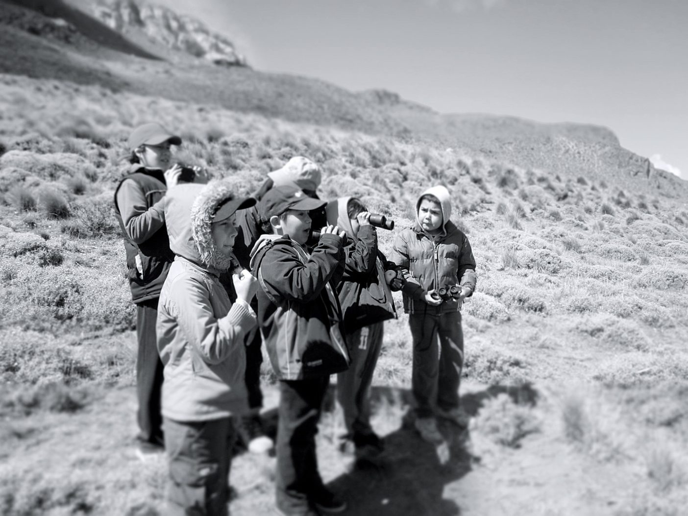 観察し、学ぶために集まった、コンドルの「里親」になった地元の小学生たち。JORGE MOLINA