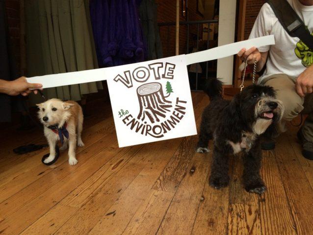 有権者のアクティビズムを奨励するための平和行進には犬のコディアックとベラも参加。Photo: Betsy Pantazelos