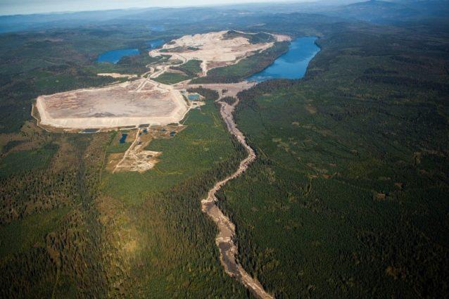 2014年8月4日に起きたブリティッシュ・コロンビアのフレーザー川流域にあるマウント・ポリー鉱山の鉱滓ダム決壊事故で流出した鉱山廃棄物は、ヘーゼルタイン川を破壊した。この魚類と野生動物への長期的影響を完全に理解するのにはこれから何年もかかる。一方、ブリティッシュ・コロンビアの鉱業大臣ビル・ベネットは、この流出事故を「(ブリティッシュ・コロンビアで)毎年起きる1万から1万5千の雪崩」と比較した。国境を分かち合う地域の住民の多くはこの事故をサーモンの生息する流域での大規模露天掘り鉱山のリスクの実例として受け止めている。Photo: Gordon Klco