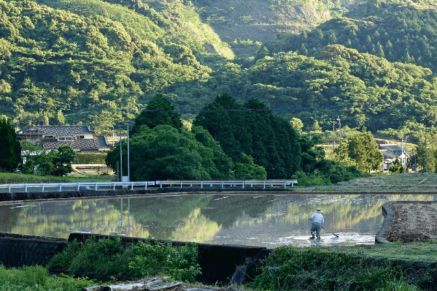 現地を訪れて最初に感じたのは、そこが日本人のふるさとを象徴する場所だということ。昔ながらの方法で田植えの準備をする住民。写真:村山嘉昭