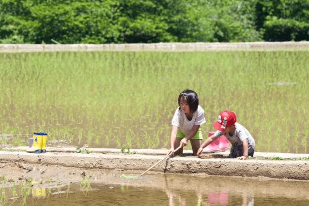 祖父母が暮らす川原が大好きな子どもたち。小さいうちから遊びに来ていたので、昆虫やカエルを捕まえるのもお手の物。写真:村山嘉昭