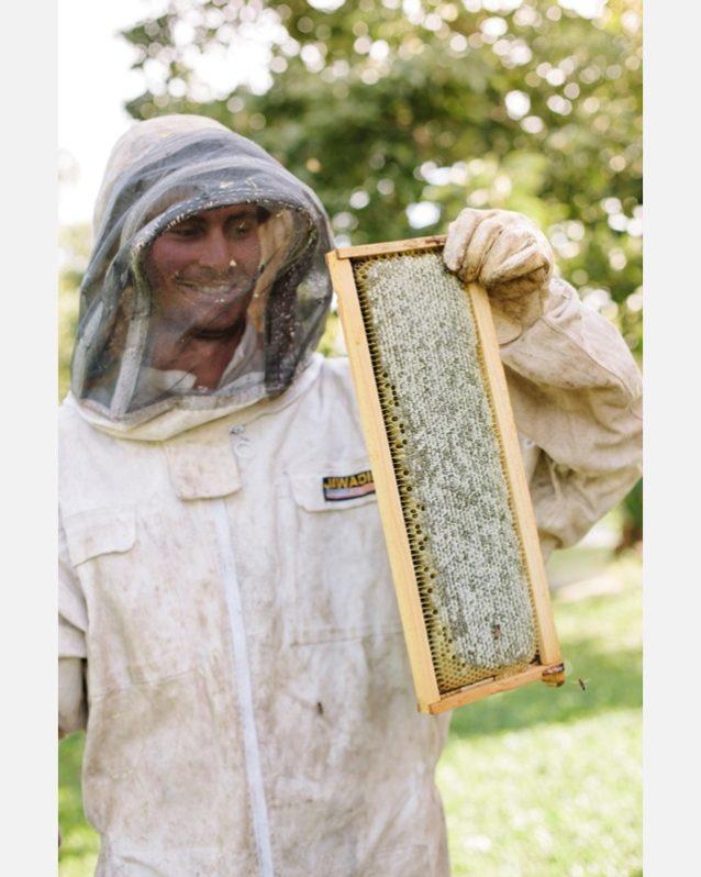 採蜜する筆者。いつの日か防護服を着ずにハチの巣を開き、葉巻タバコの煙を吹きかけてハチを落ち着かせる熟練者のようになれるといい。そのときまで、防護服は不可欠だ。Photo:Anna Riedel