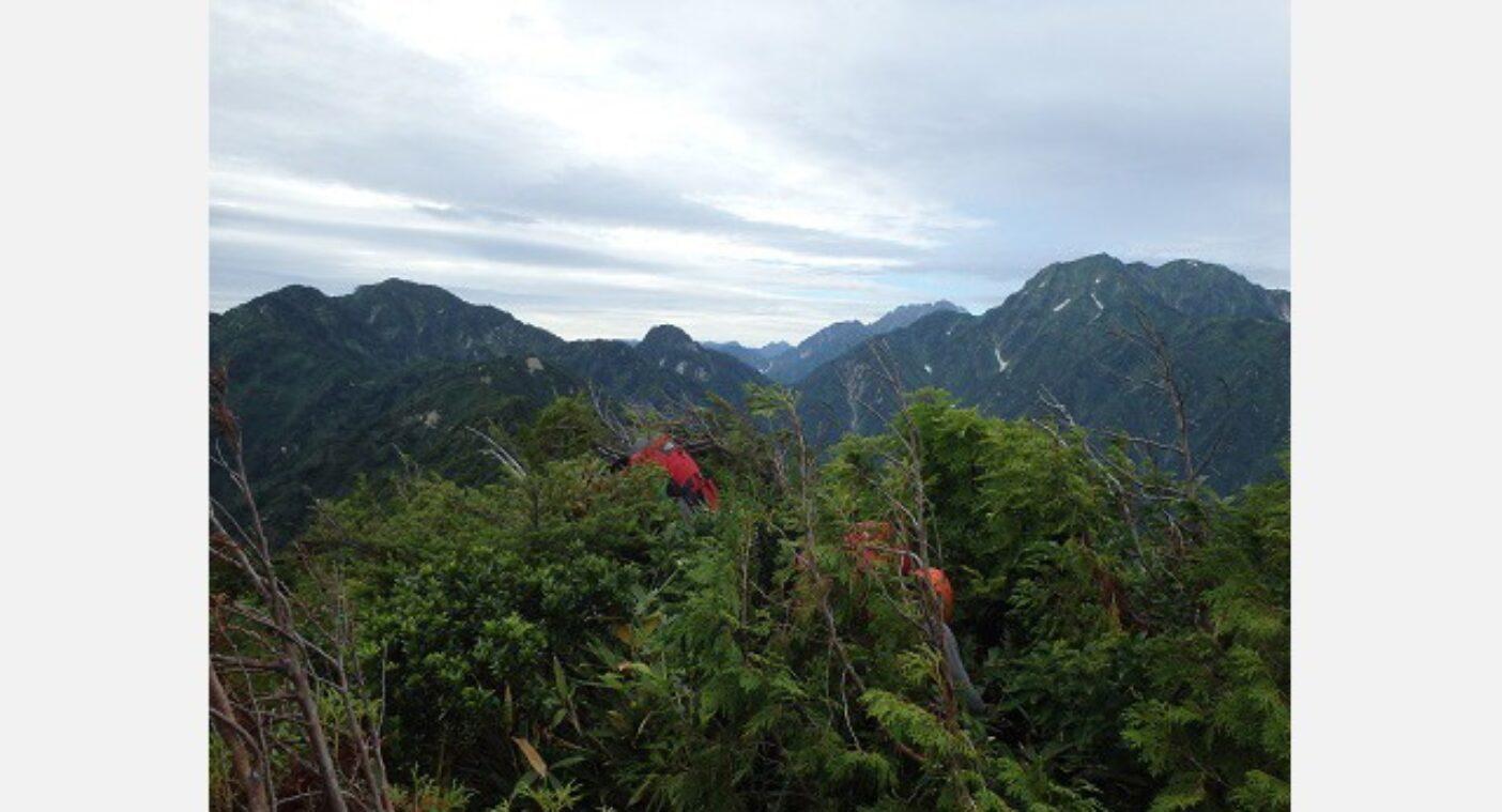 藪をかき分け進む。はるか彼方に目指す毛勝山、さらに剣岳は遠い。写真:谷口けい