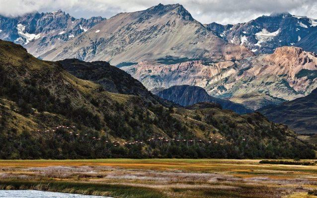 パタゴニア公園で安全と十分な餌を見つけるフラミンゴ。チリのアイセン地域のヴァレ・チャカブコ。Photo: Linde Waidhofer
