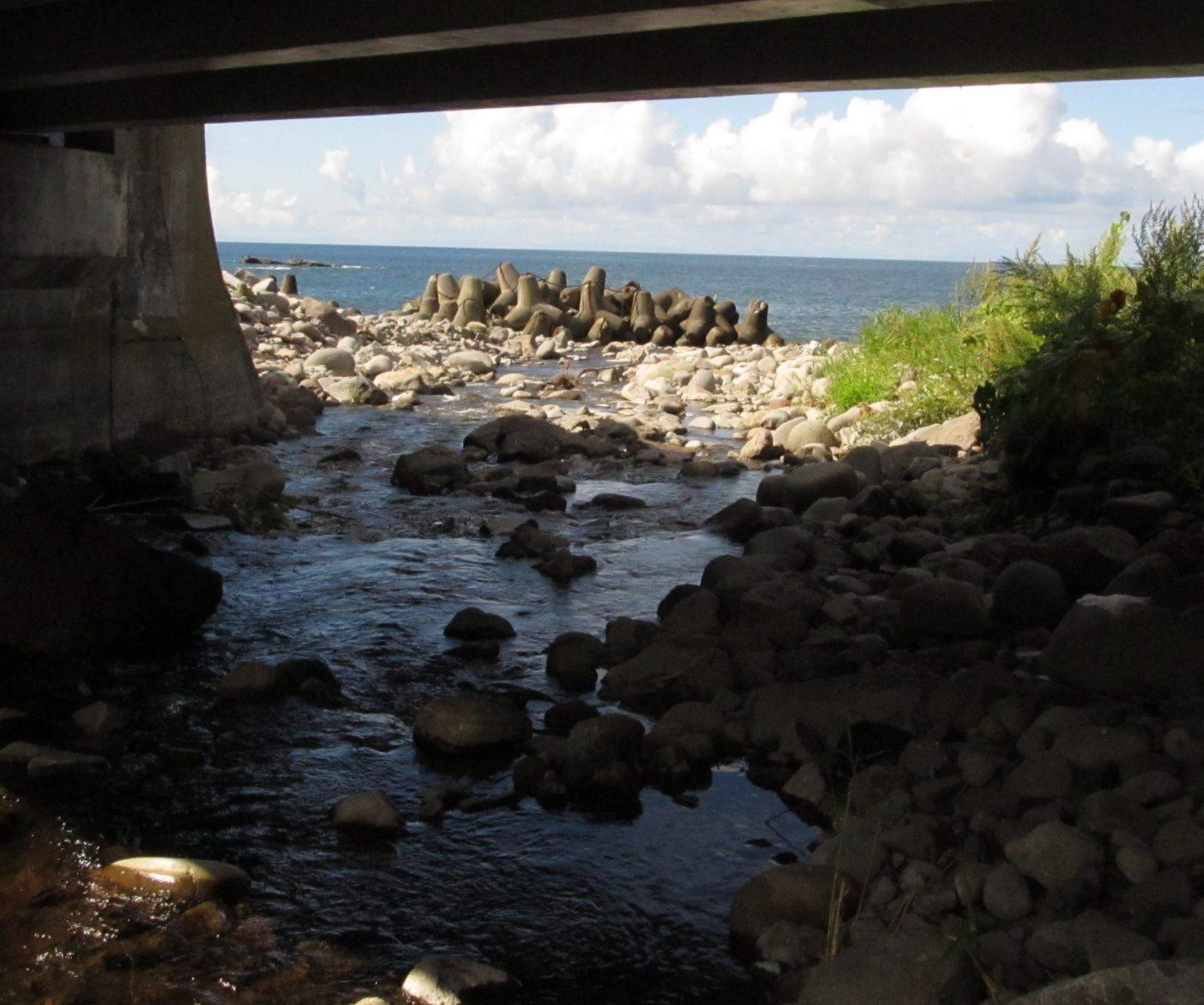 浸食を抑えるために海岸に設置されたテトラポット。写真:田口康夫