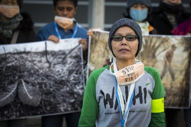 インドネシアはブラジルをしのぎ、世界最大の農地化のための森林破壊国となった。最近の(島の森林を伐採することを目的とした意図的な)火災で、アメリカを上回る温室効果ガスを排出した。Photo:Kodiak Greenwood
