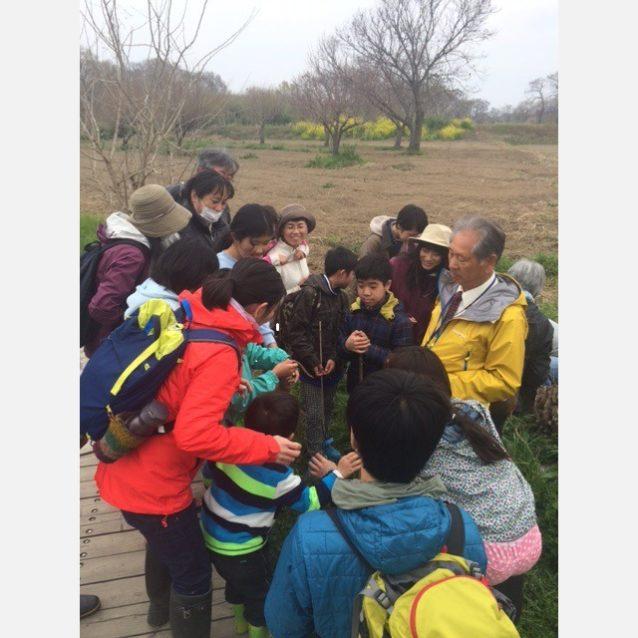 春の昆虫観察。大人も子供も昆虫観察に夢中に。写真:中山翔太