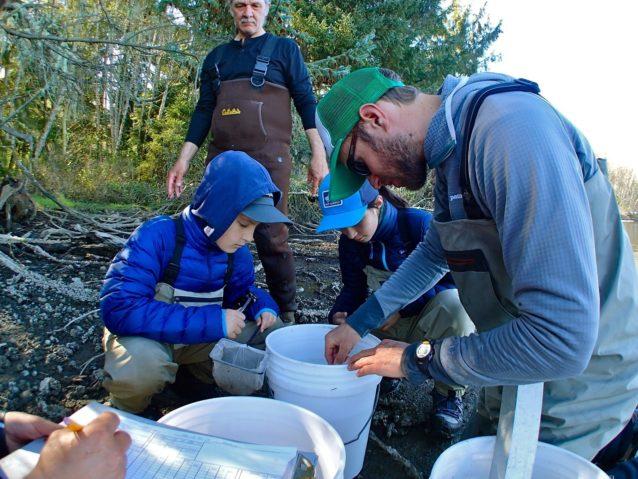 捕獲した魚を測定して記録する。Photo: Dylan Tomine
