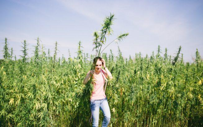 セントキャサリン・カレッジとベリー・センターの協働は、持続可能な農業と生態学的農業の学位へとつながった。セントキャサリン・カレッジは「農業法案」を通して連邦政府から産業用ヘンプの栽培と研究の許可を取得。『ハーベスティング・リバティ』の主役マイケル・ルイスはこのプログラムの卒業生である。Photo:Donnie Hedden