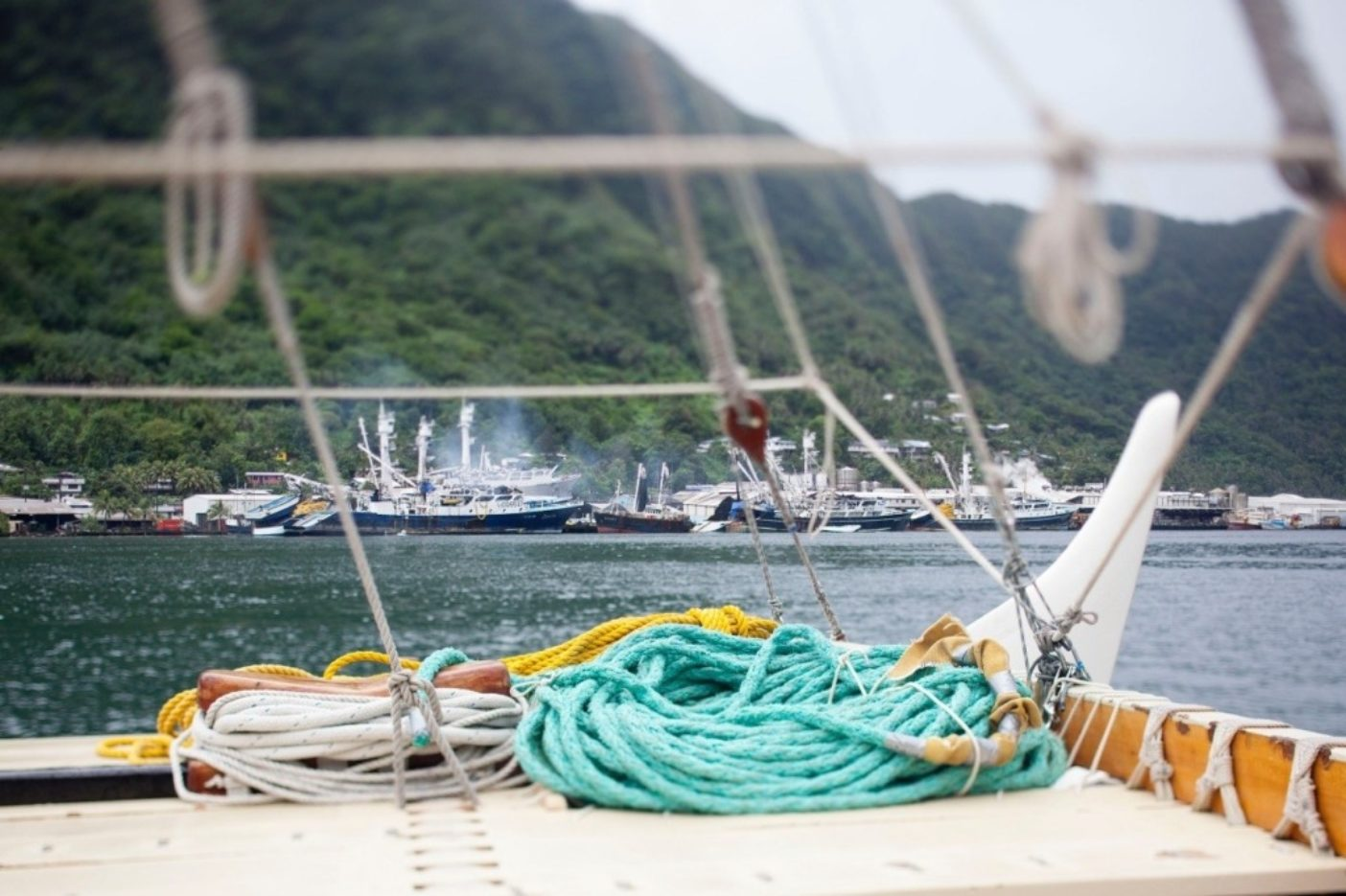 ホクレア号のデッキからはパゴパゴ港の活気ある商業漁業の様子が、視覚と嗅覚と聴覚を通して伺える。Photo: John Bilderback