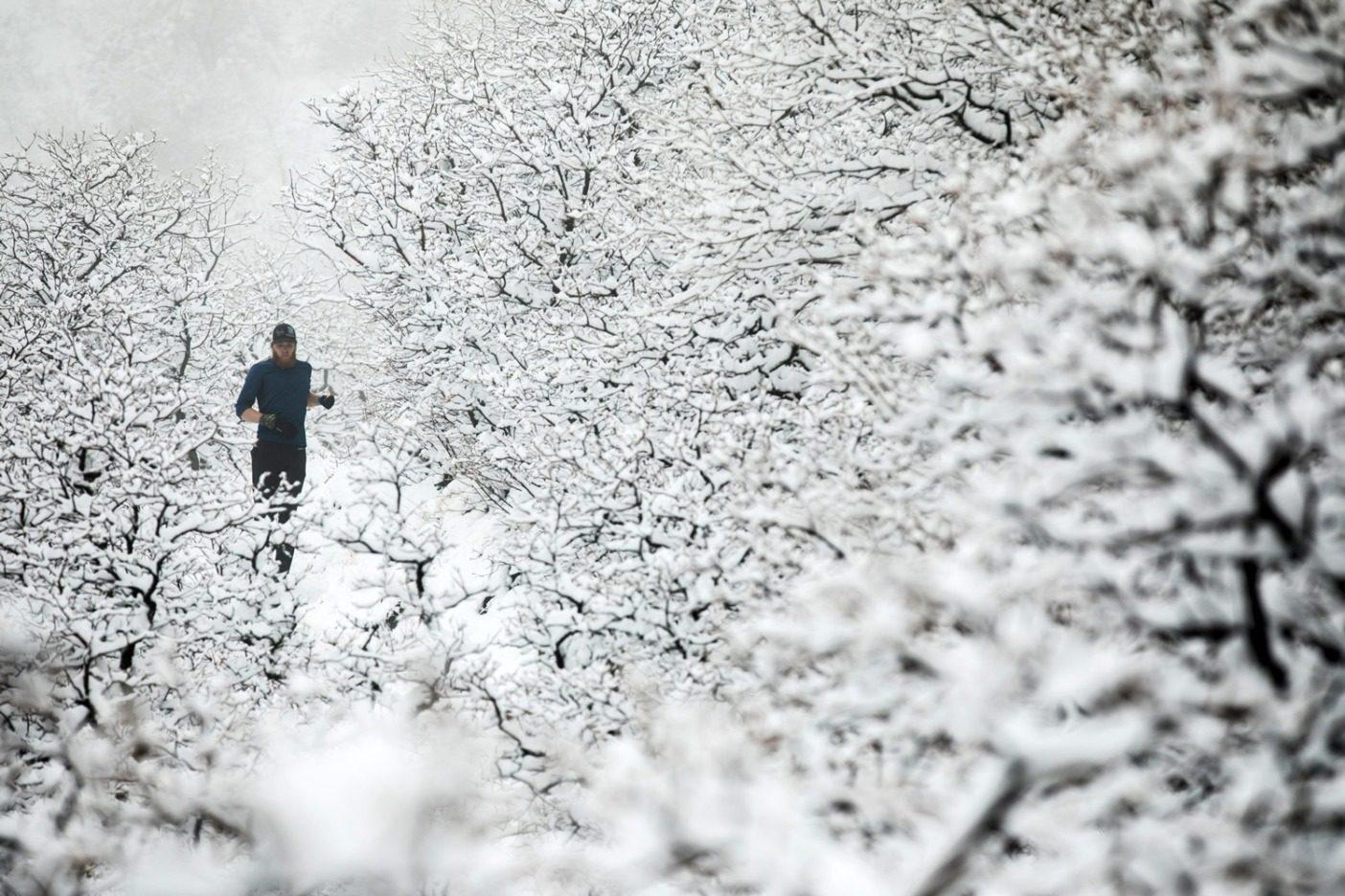 コースから外れて樹林のセクションを降りるルーク・ネルソン。Photo: Andrew Burr