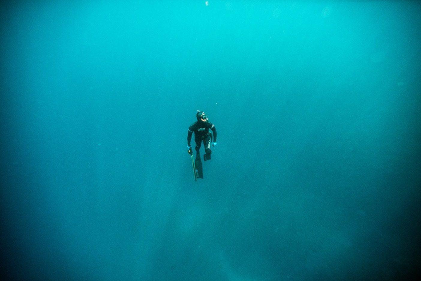 海のなかは非常に孤独に感じることもあるが、すべてと繋がれていることを実感できる場所でもある。写Photo: Pedro Gomes