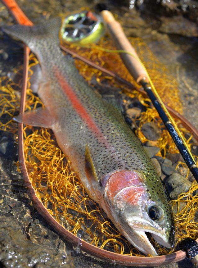軽量という恩恵がもたらす快適な釣り旅:ミドル・フォーク・パッカブル・ウェーダーと過ごした時間(北海道釣行編)