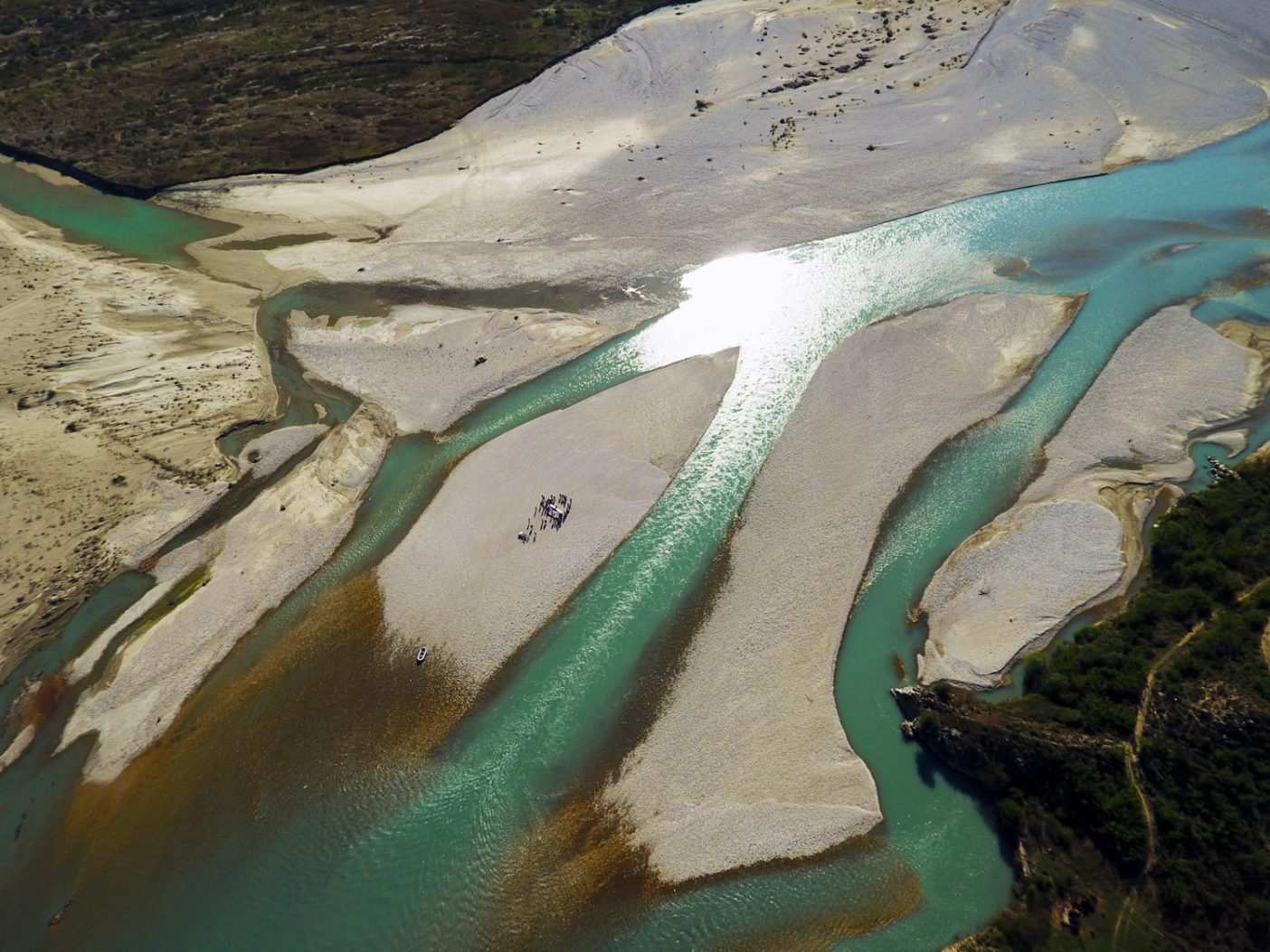 ヴョサ川に運ばれる大量の堆積物は、記者会見が開かれたこの小さな砂利の中州のように、じつに多様な生息地タイプを作り出す。 Photo: © Gregor Šubic