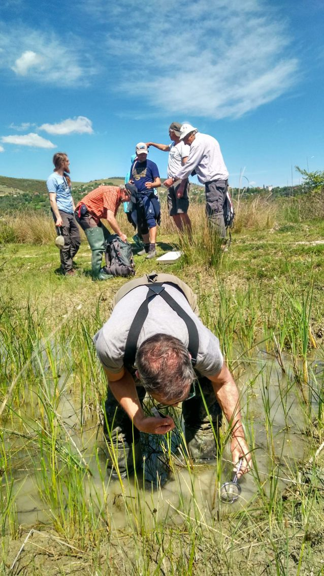 ヴョサ川の初調査を実施し、発見に驚く4か国からの科学者たち。ここで水生昆虫を探すのはミュンヘンの〈Büro H2〉のウルリッヒ・ヘッケス(手前)。 Photo: © Cornelia Wieser