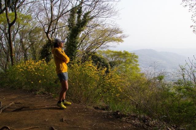 いつも眺める景色だが覗くタイミングや場所も違えば新鮮に感じる。春は花の色が綺麗だ。