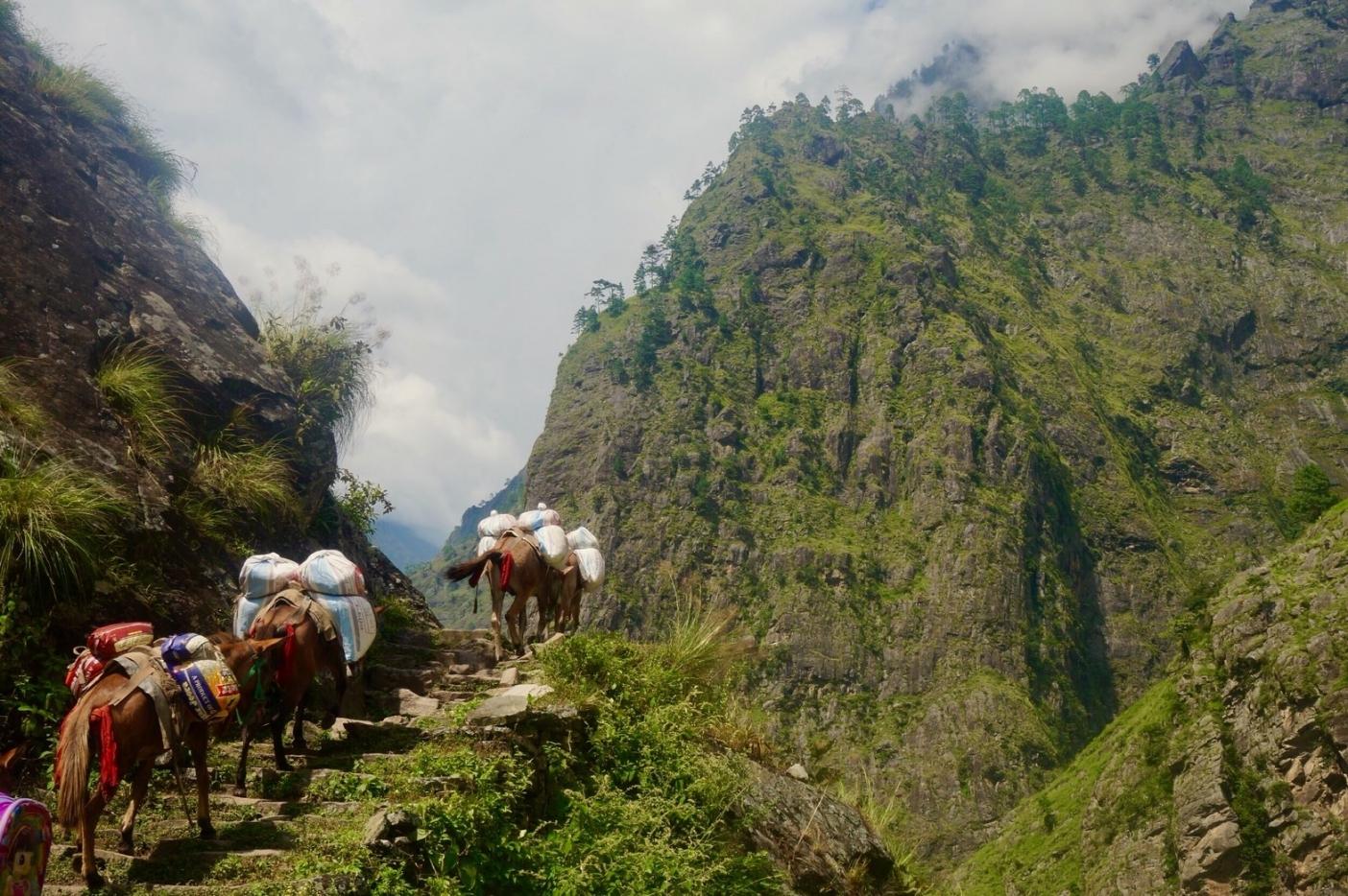片道100キロにおよぶ BCへのキャラバンのスタートは壮大な渓谷を進む。写真:福田倫史