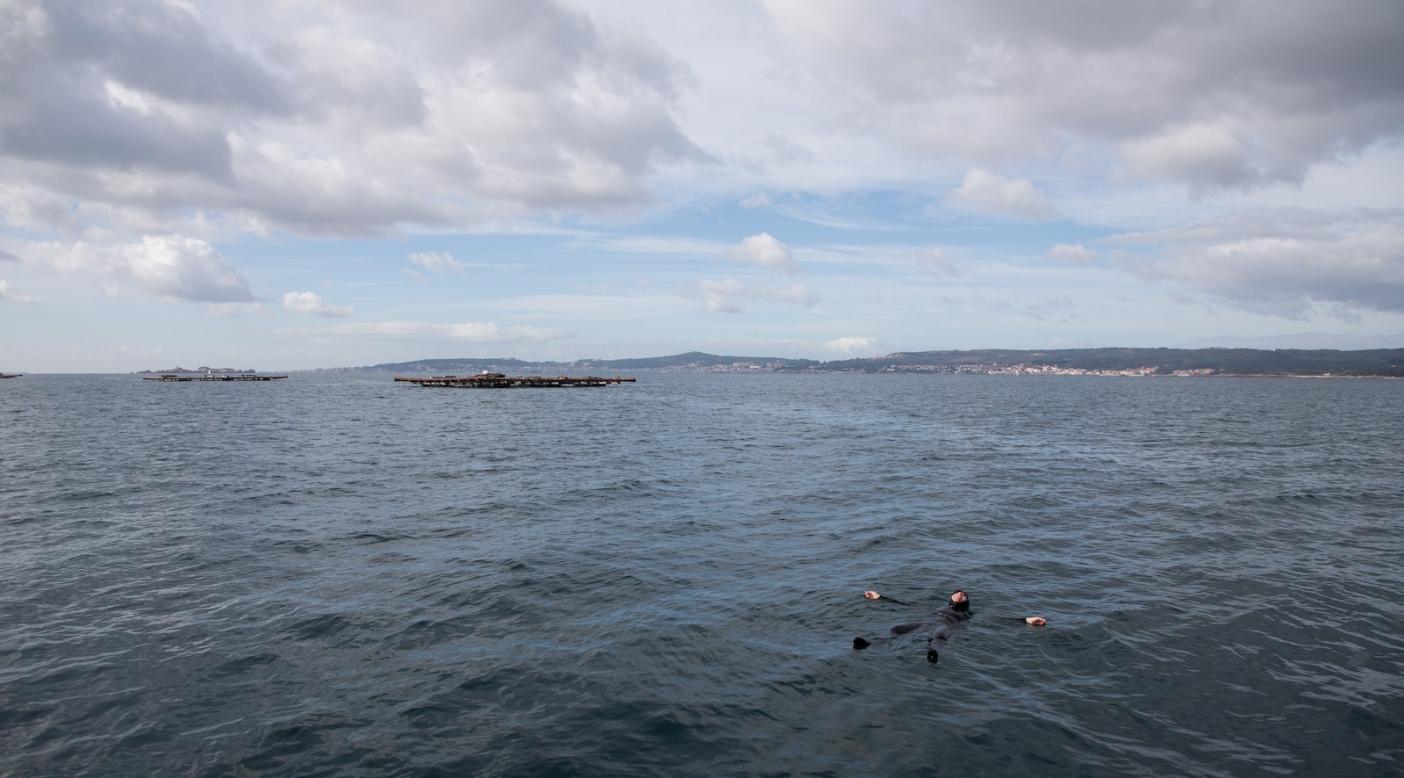 海の上に浮かぶダイバー