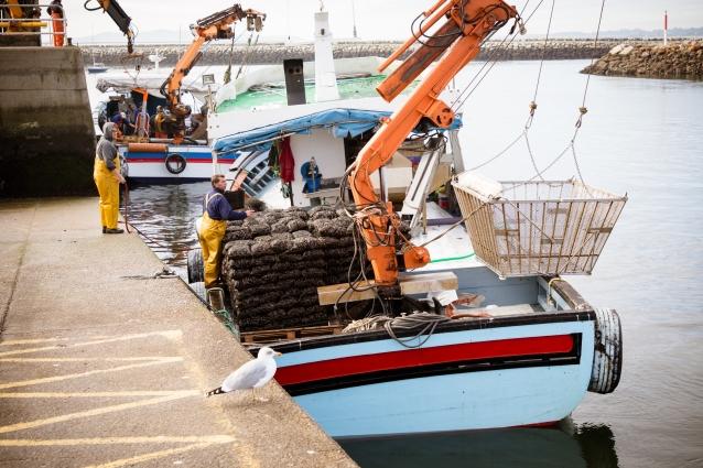 波止場に泊まっている、バスケットを吊り上げるクレーンを載せた漁船