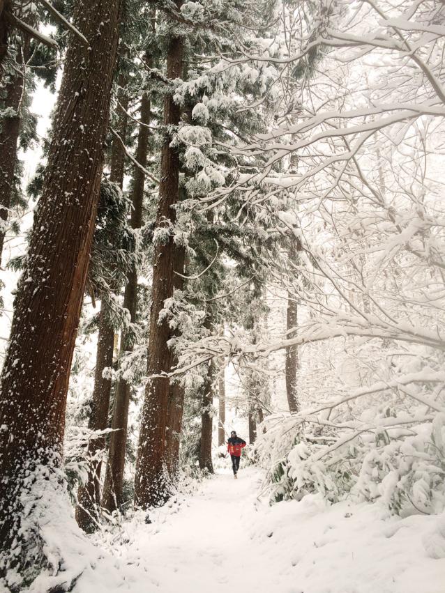 冬の斑尾を走る。Photo: Eriko Ishikawa